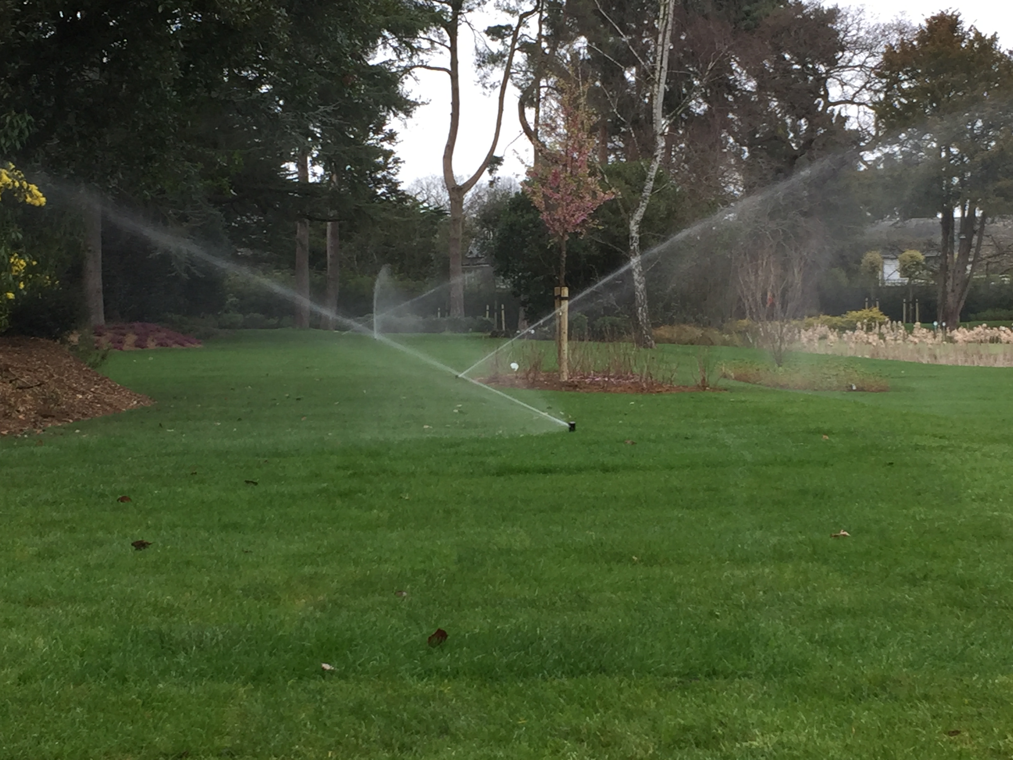 Lawn sprinkler installations by LDC for Surrey and the South East