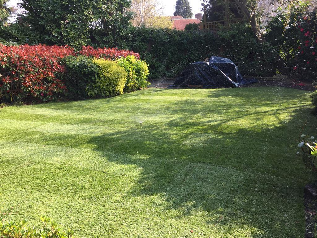 Turf and Irrigation Sprinkler System installed in Kingston on Thames in Surrey by LDC Turf and Irrigation 12